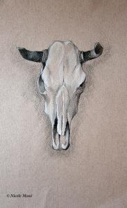 January 6_cow skull